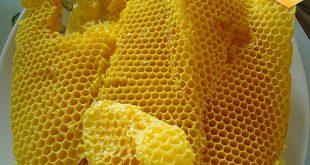 شرکت پخش موم عسل